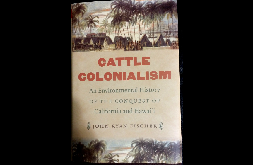 cattle-colonialism